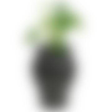 Ming Plant Pot (Indoor & Outdoor)