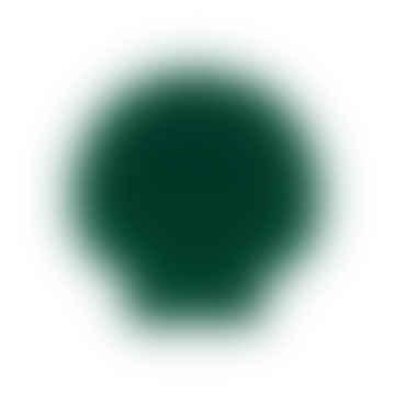 Velvet Green Shell Jewellery Box
