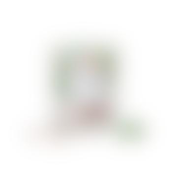 Rose Quartz Light Green Calcite Gemstone Diffuser Set