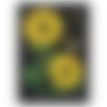 Cavallini & Co Sunflowers Poster