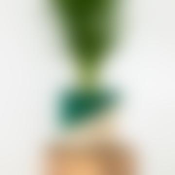 Medium Diagonal Green & Natural Raffia Basket