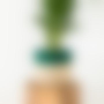 Medium Green Stripe & Natural Raffia Basket