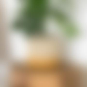 Large Yellow & Natural Raffia Basket - Bottom Stripe
