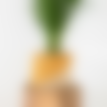 Large Diagonal Yellow and Natural Raffia Basket