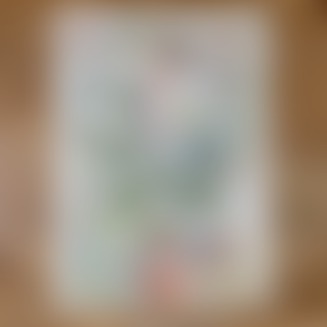Cavallini Gift Wrap Wall Art - Vegetables - Folded