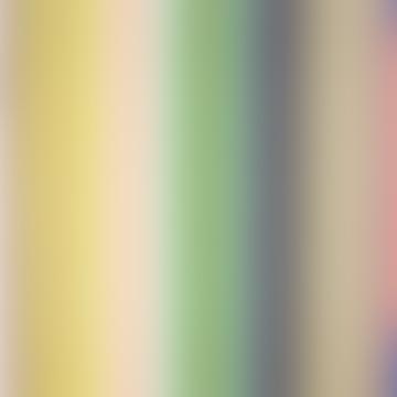 Multicolored Singoalla Cotton Fabric