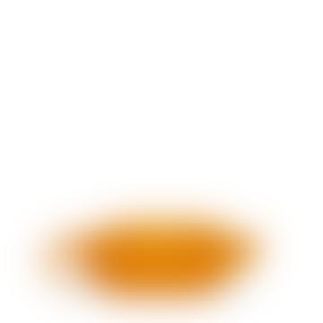 Hipbag Brik Seabuck Orange