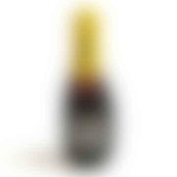 'Pawsecco Bottle' - Plush Dog Toy