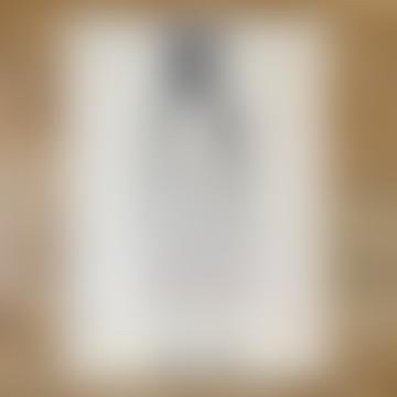Cavallini Gift Wrap Wall Art - Eye Test - Rolled