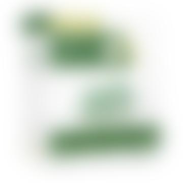 Liposomal Sulforaphane Matrix Cellular Detoxification Cognitive Health