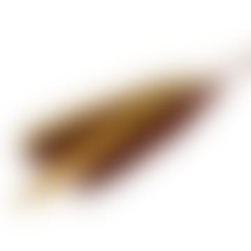 livs Dried Flowers - Pampas Reed Rust & Mustard Stem Bundle