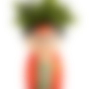 &Quirky Frida Kahlo Body Vase