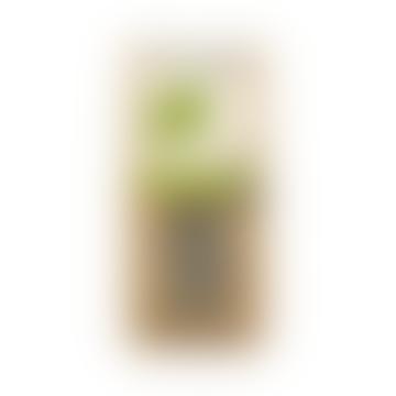 Pure Lemongrass Tea