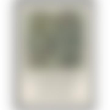 Impression de l'exposition William Morris