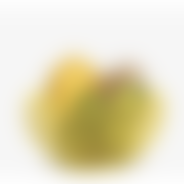Bowl Nest Yellow 20cm