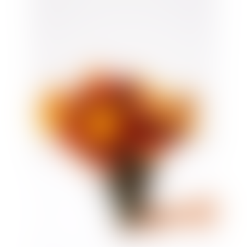 Dried Helichrysum Bouquet