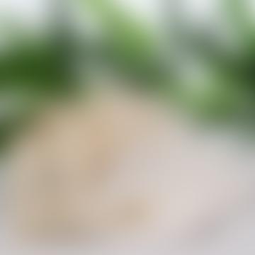 Lot de 6 tampons démaquillants réutilisables en bambou bio de luxe