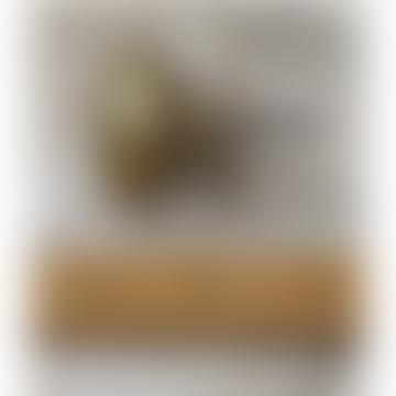 Antique Brass Knob 38 Mm