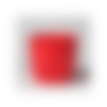 Red Raspberry Geometric Pot