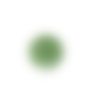 Plato de postre verde bordallo