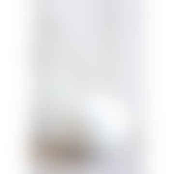 XL Cream White Bari Vase