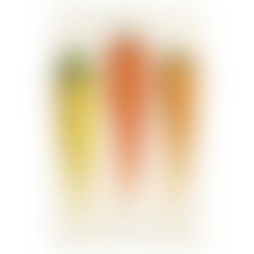 Handmade Decoupage 10 x 16 Inch Rectangular Glass Tray V Carottes de Flandre