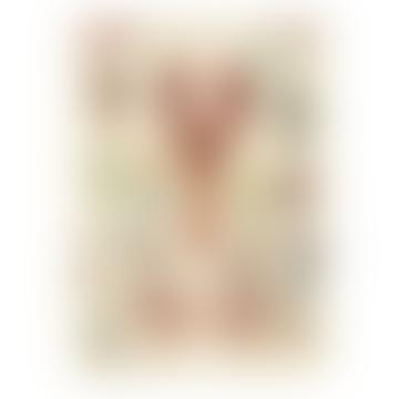 Crustaceans - Cavallini Vintage Poster   51 x 71cm