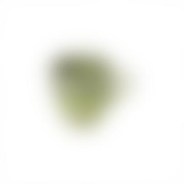 Madeira Mug Green