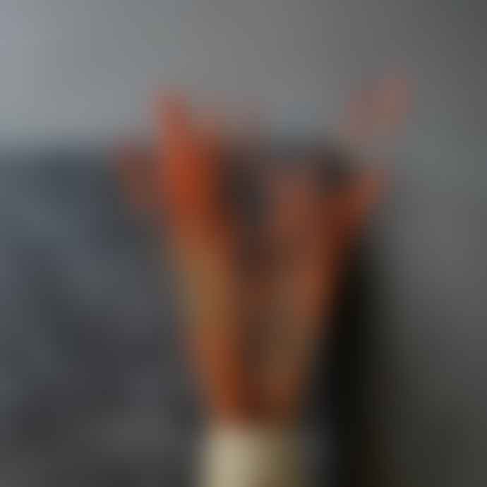 livs Dried Flowers - Wheat Burnt Orange
