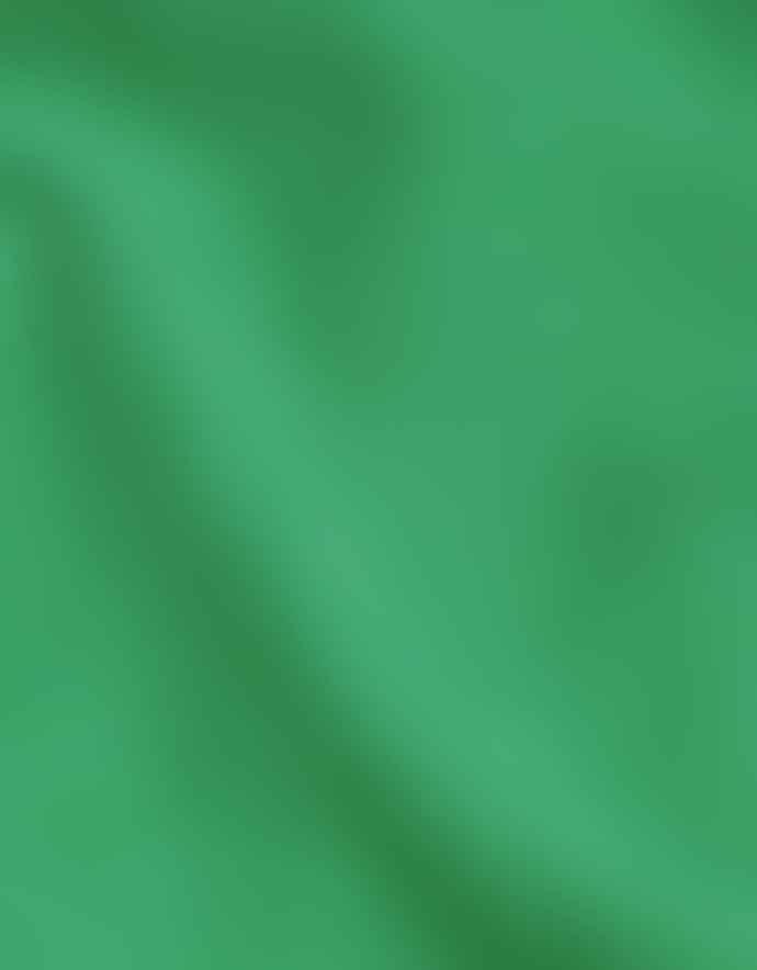 Colorful Standard Classic Organic Hood Kelly Green