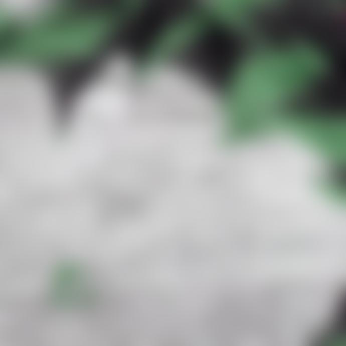 Hvisk Jolly Water Lily Bag - Green/Black Multi Print