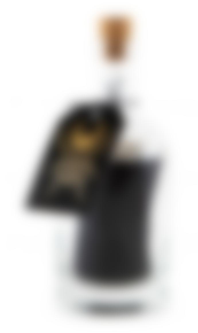 Archivist Bug With Black Sticks Match Bottles Set Of 2