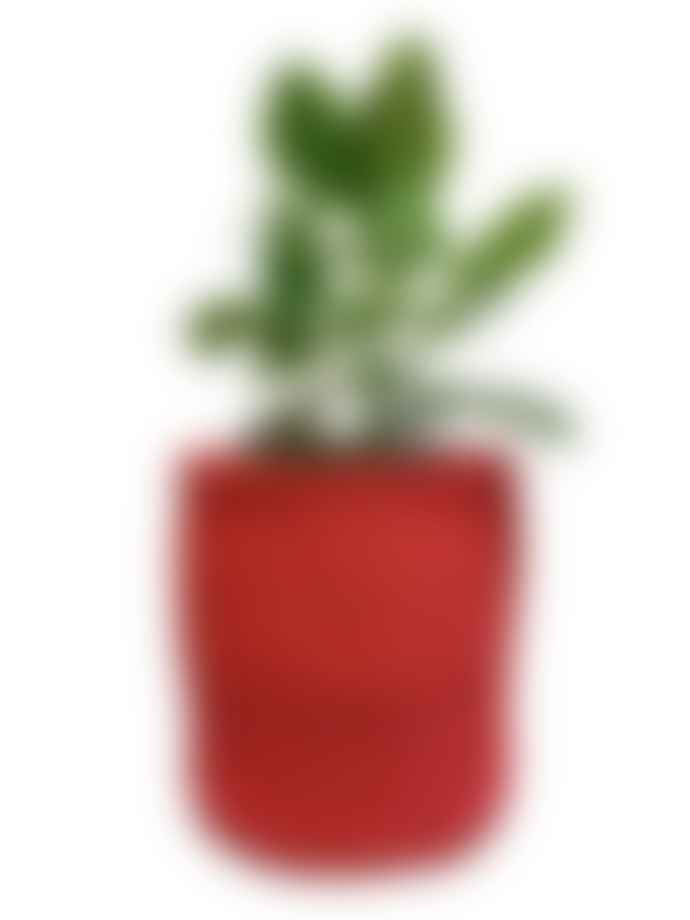 Hadithi Red Basket