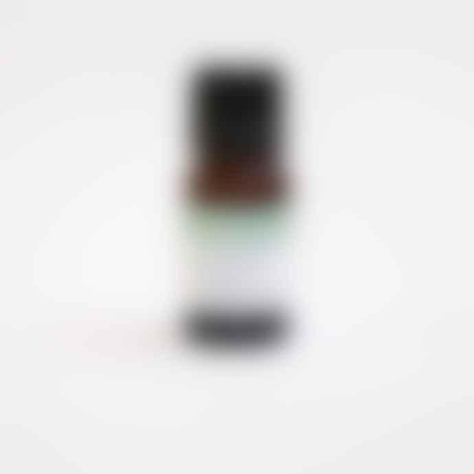 Berylune Jasmine Dilute Essential Oil