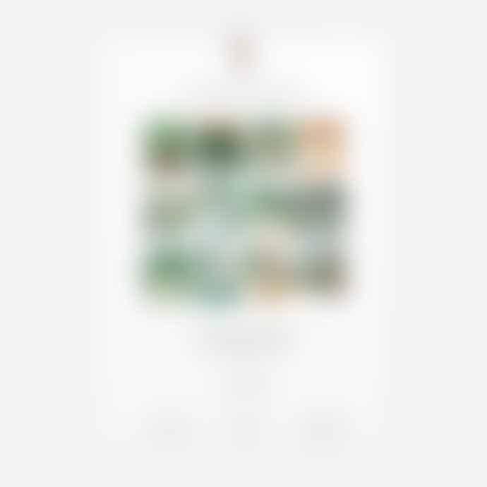 All The Ways To Say Botanical Kingdom 2021 Large Calendar