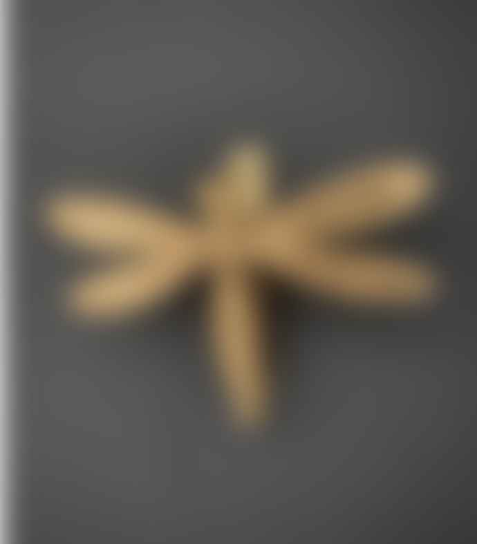 Bramley & White Dragonfly Knocker Brass