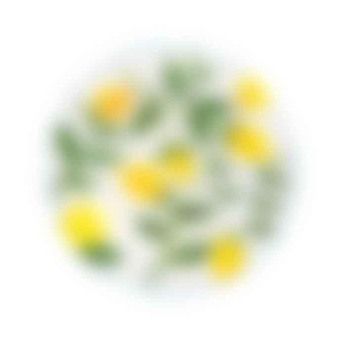&klevering Lemon Twig Plate - Set of 4