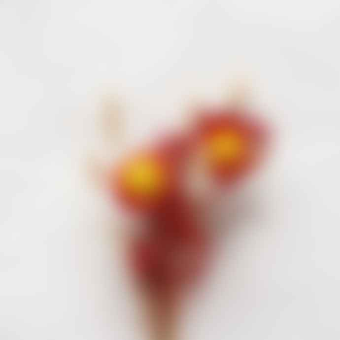 Dried Flower Bouquet Indian Summer