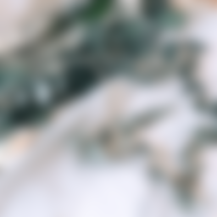 Shida Preserved Flowers Indoor Wreath Making Kit