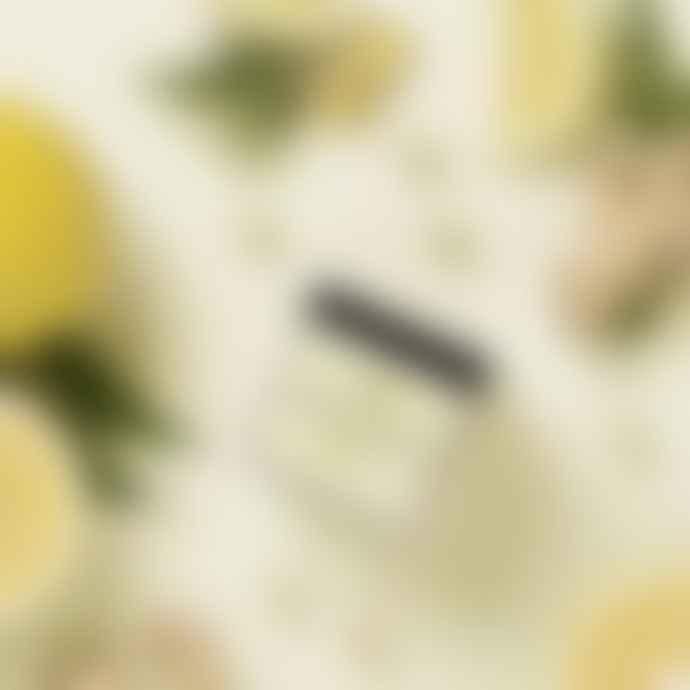 WALLY and WHIZ Wine Gums Elderflower W Ginger