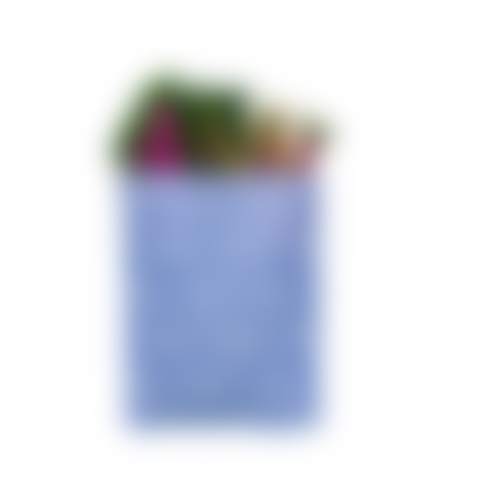Beebagz Starter Pack Beeswax Bags Blue