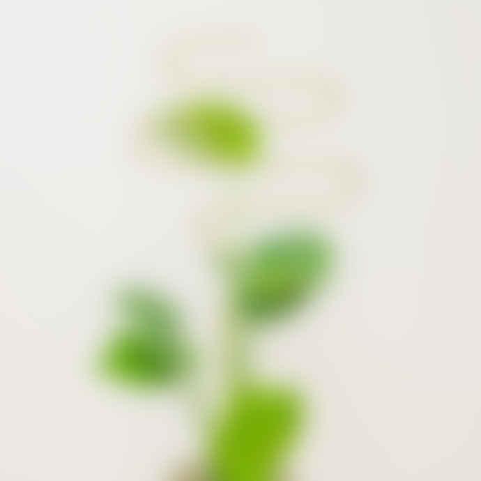 Botanopia Gold Plant Stakes