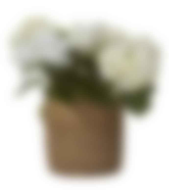 Wikholm Form Large Belle Natural Pot
