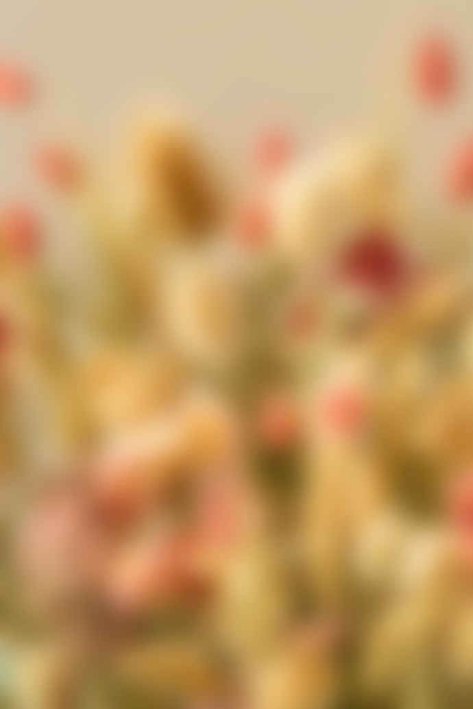 Pompon Bazar Bouquet of Dried Flowers Camargue Medium Format