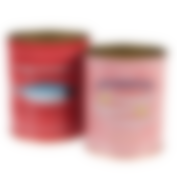 Rex London Fish Storage Tins Set of 2