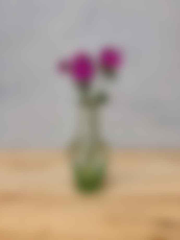 La Soufflerie Johnas Transparent Vase