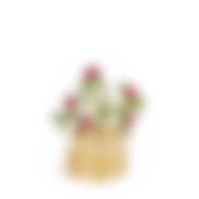 Klong Small ÄNG Vase Brass