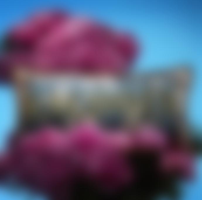 Designers Guild Christian Lacroix Lacroix Cherry! Blue Denim Cushion