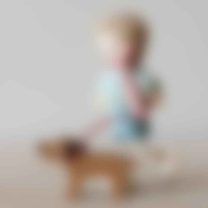 Tender Leaf Toys Mr Goodwood And His Dog Doll's House Family