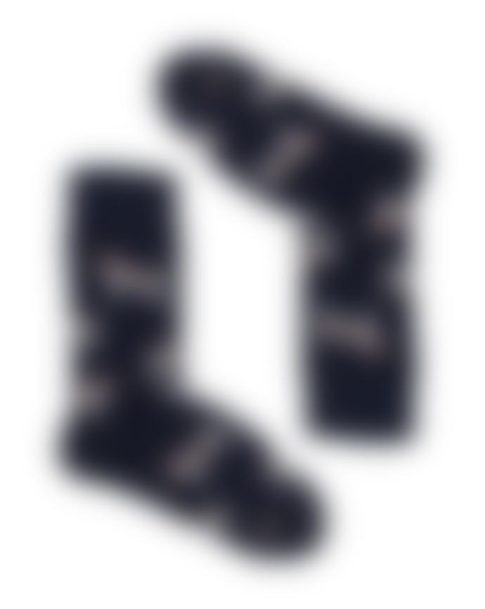 Kabak Fox terrier Blue Socks